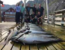 © www.lofoten-fishing.de